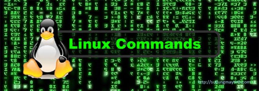 (Serial câu lệnh trong Linux) Phần 5- Các câu lệnh thường dùng khác trong Linux